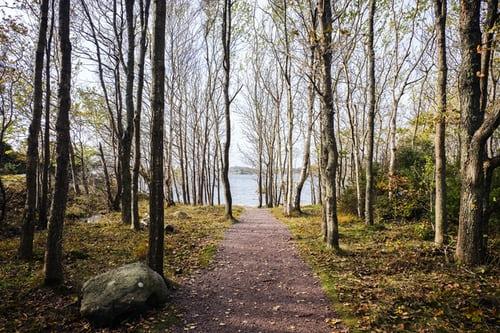 Køb minimalistisk nordisk design fra Cane-Line.